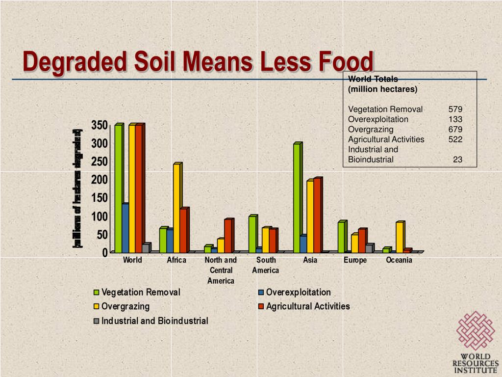 Degraded Soil Means Less Food