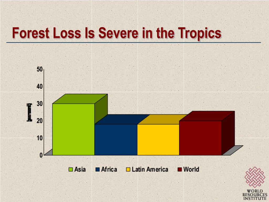 Forest Loss Is Severe in the Tropics