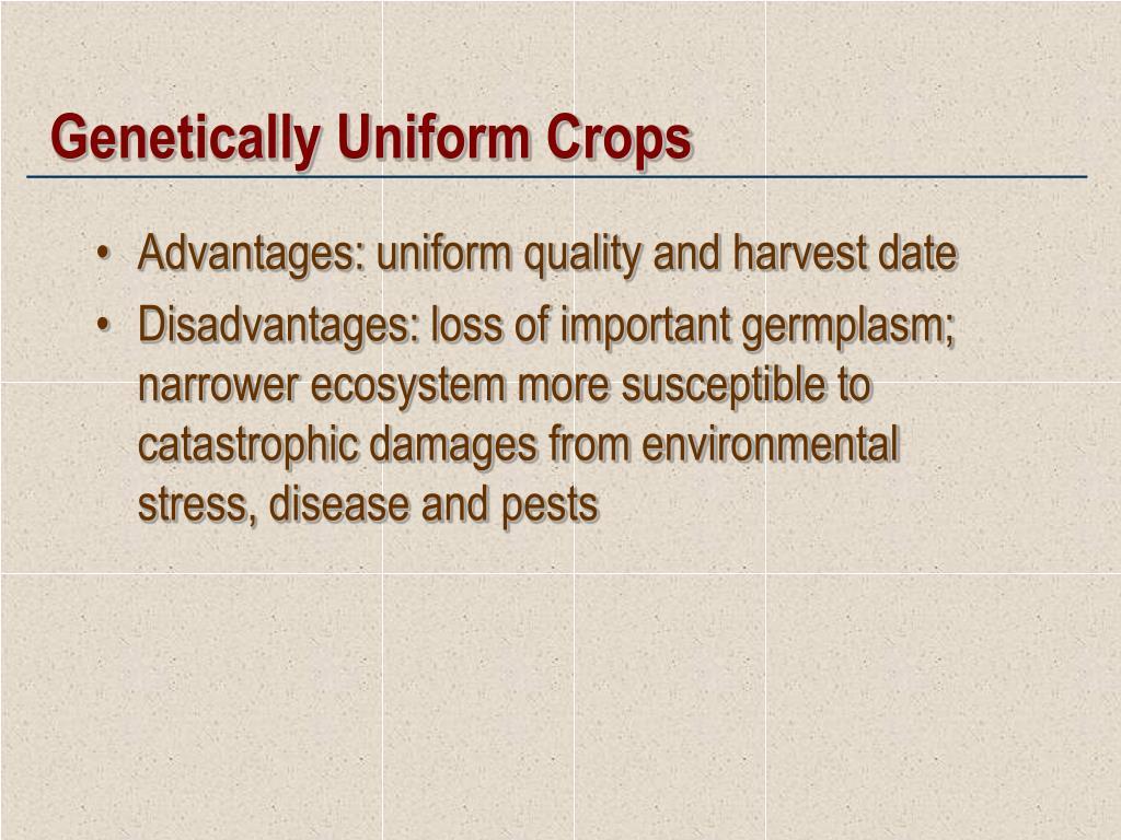 Genetically Uniform Crops