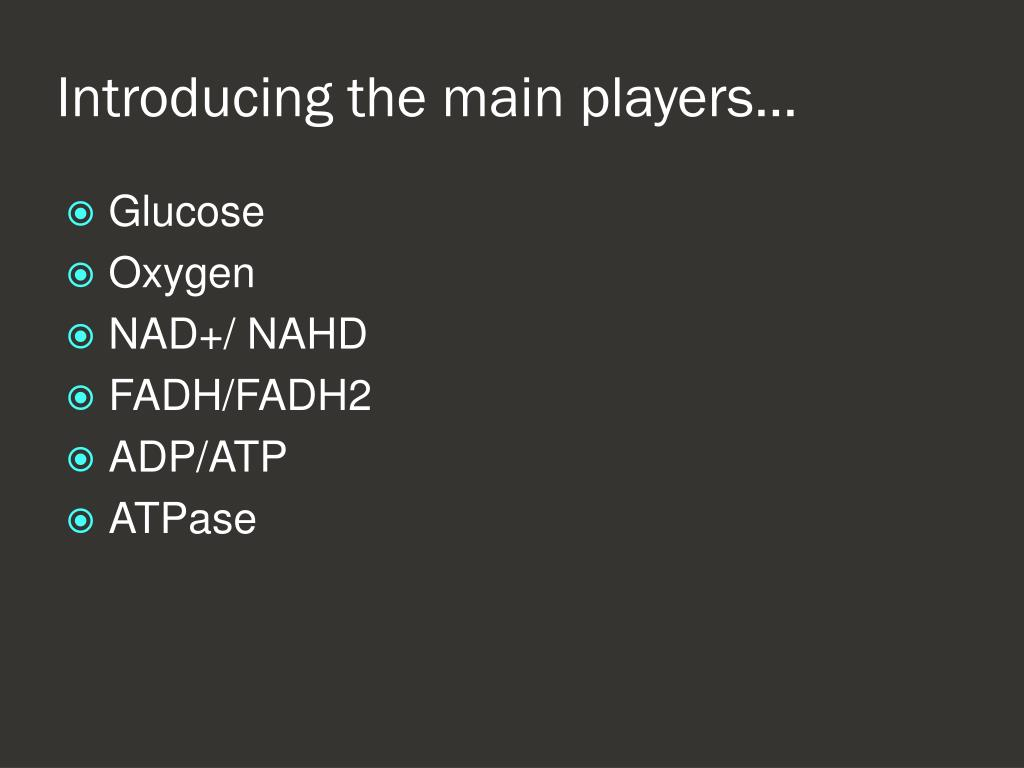 Introducing the main players…