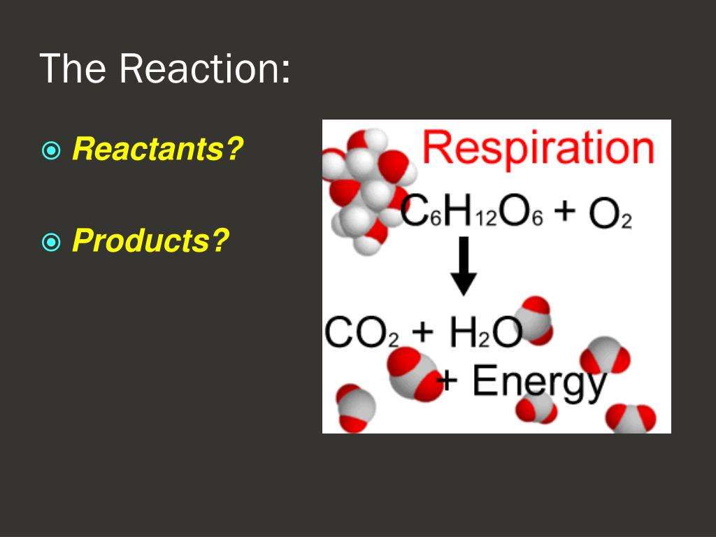 Reactants?