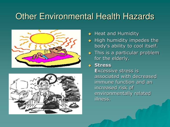 Other Environmental Health Hazards
