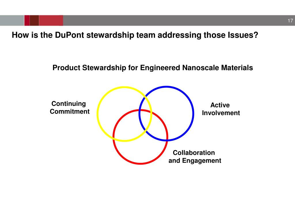 How is the DuPont stewardship team addressing those Issues?