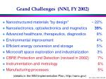 grand challenges nni fy 2002