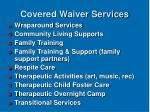covered waiver services