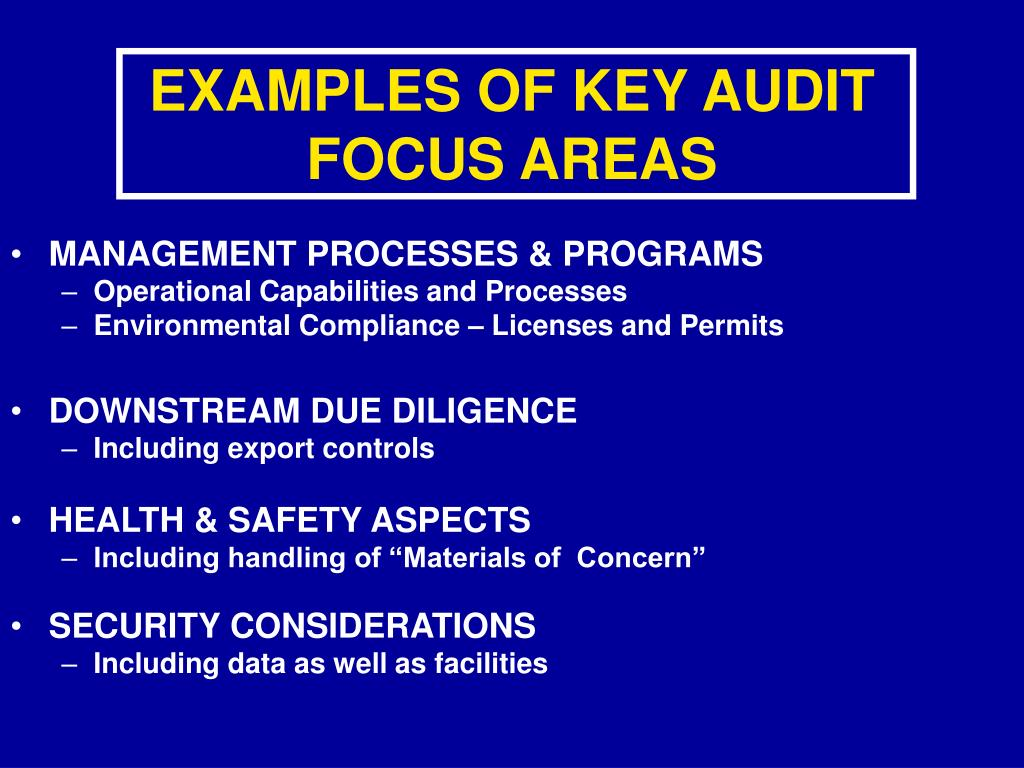 EXAMPLES OF KEY AUDIT FOCUS AREAS