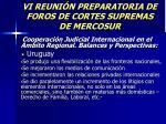 vi reuni n preparatoria de foros de cortes supremas de mercosur42