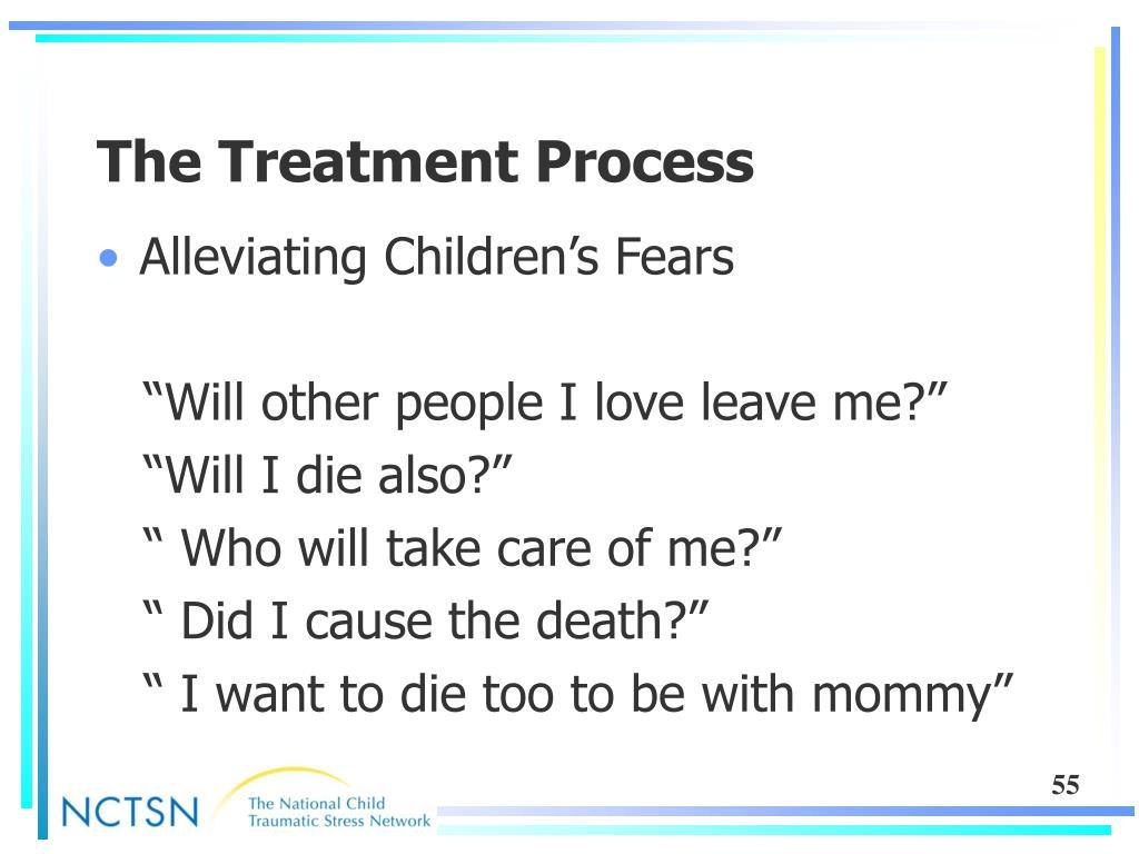 The Treatment Process