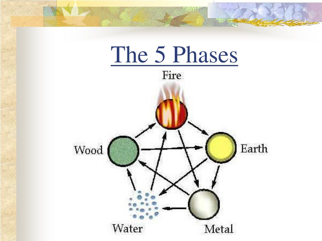 The 5 Phases