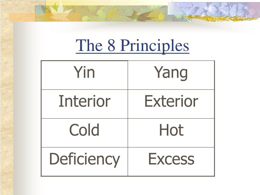 The 8 Principles
