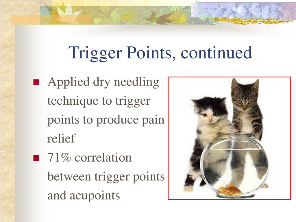 Trigger Points, continued