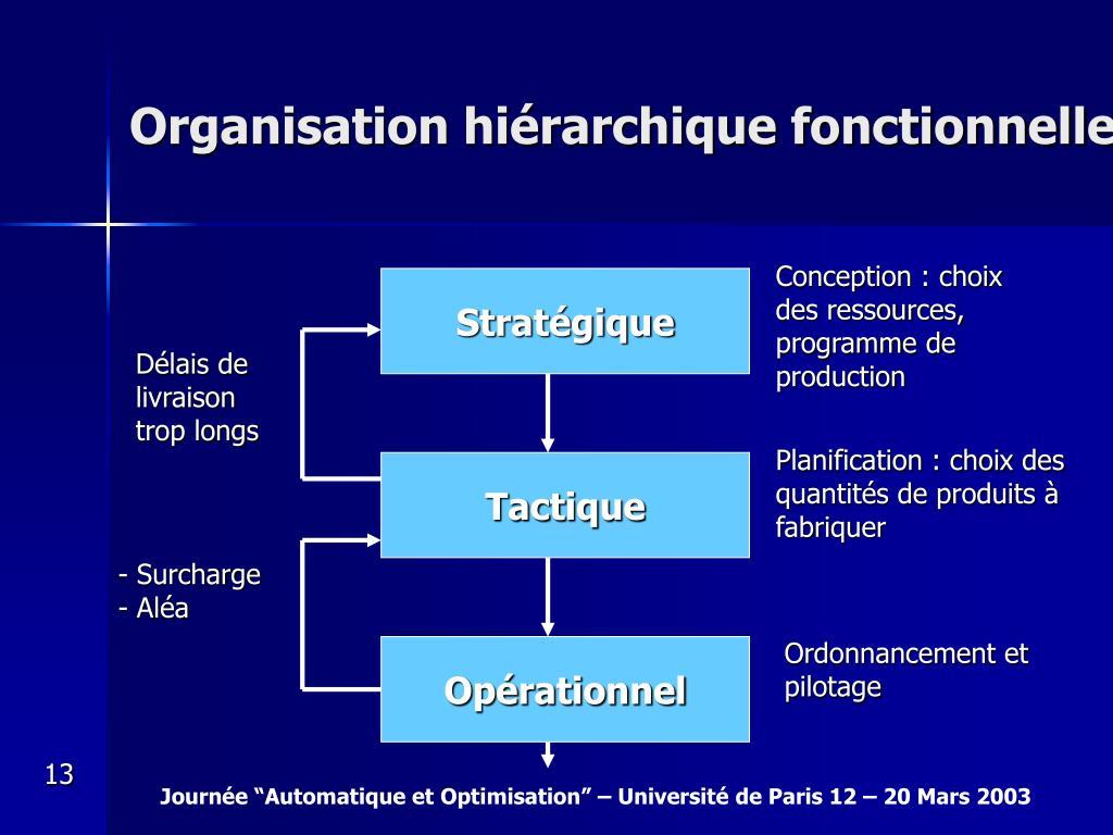 Organisation hiérarchique fonctionnelle