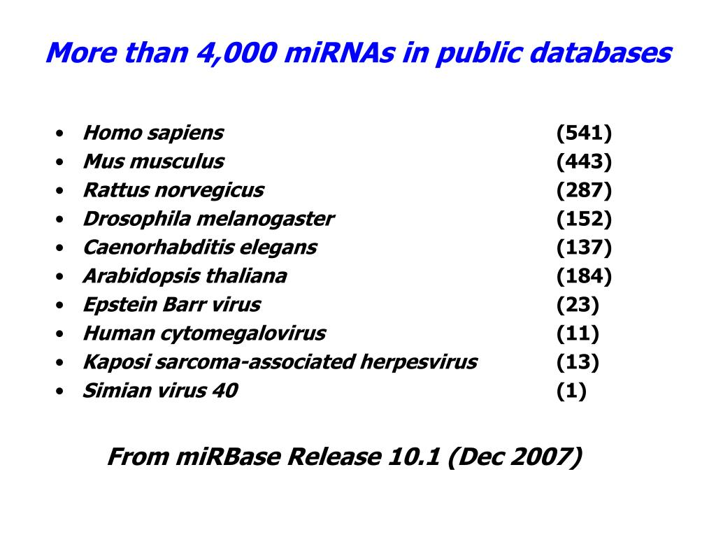 More than 4,000 miRNAs in public databases