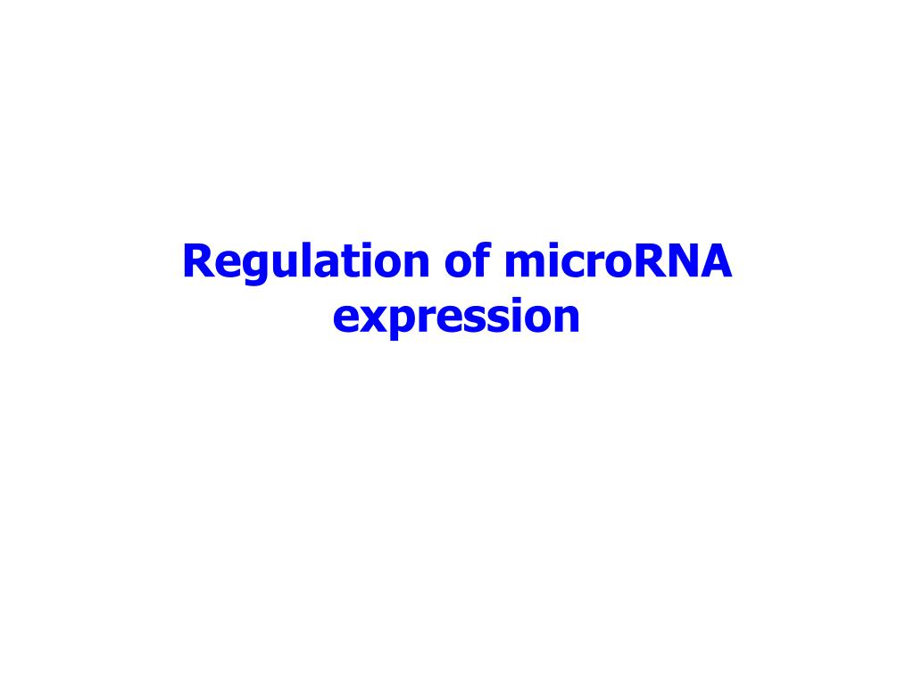 Regulation of microRNA expression