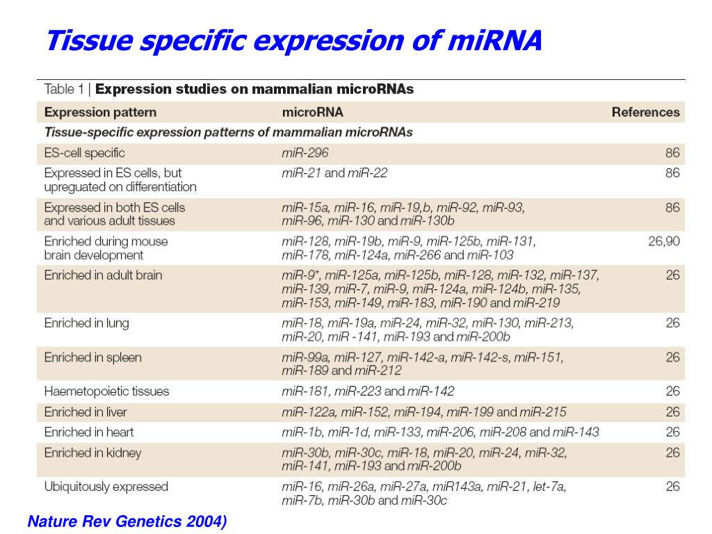 Tissue specific expression of miRNA