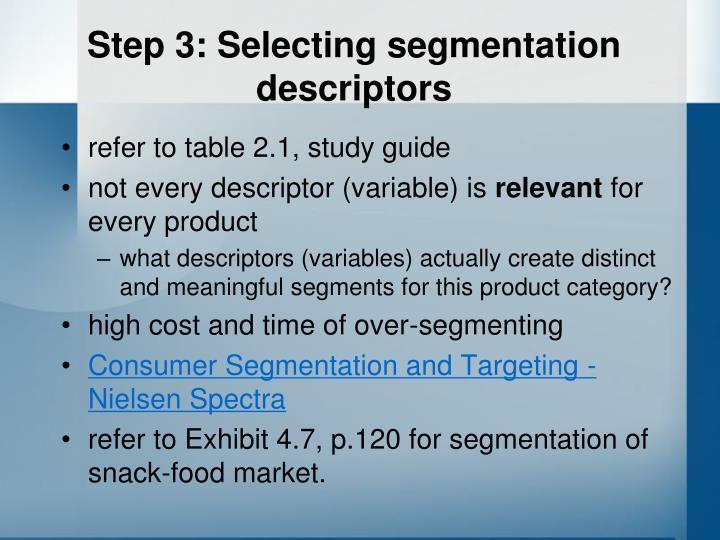 Step 3: Selecting segmentation descriptors