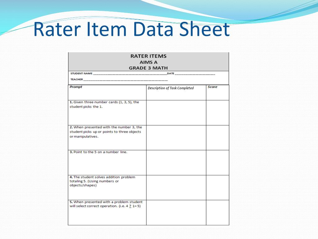 Rater Item Data Sheet