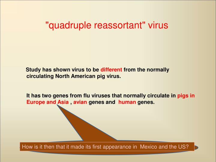 """quadruple reassortant"" virus"