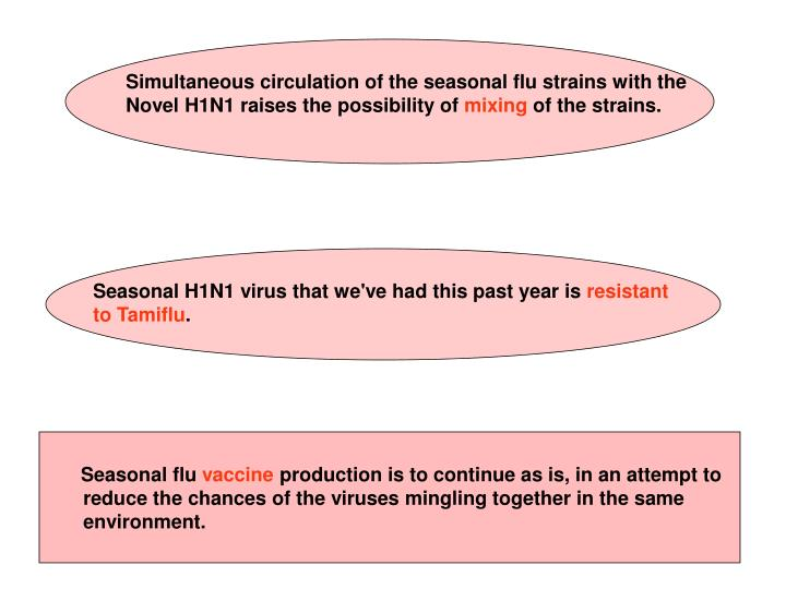 Simultaneous circulation of the seasonal flu strains with the Novel H1N1 raises the possibility of