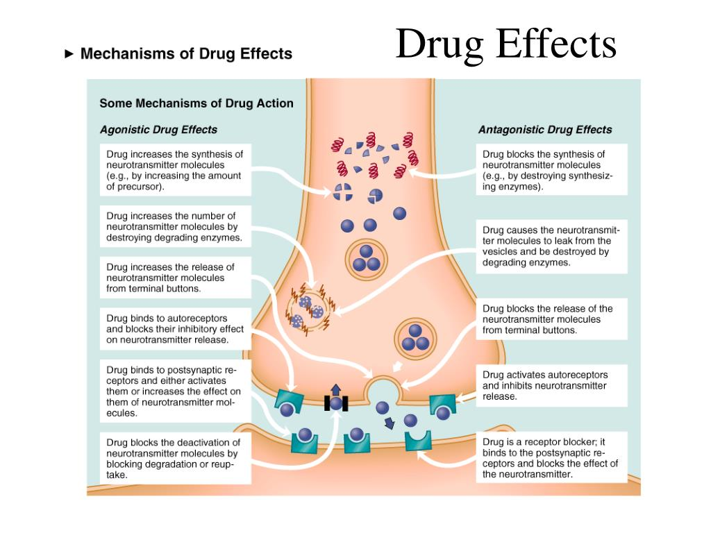 Drug Effects