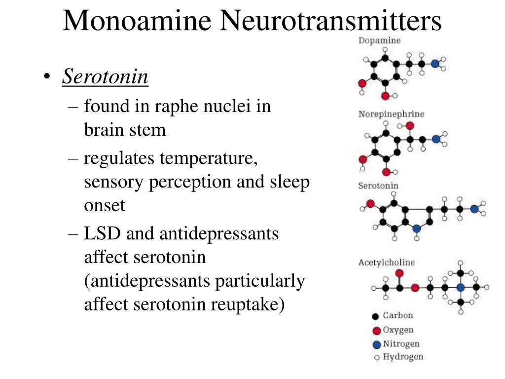 Monoamine Neurotransmitters