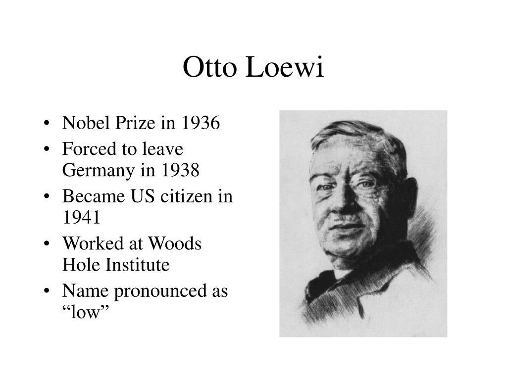Otto Loewi