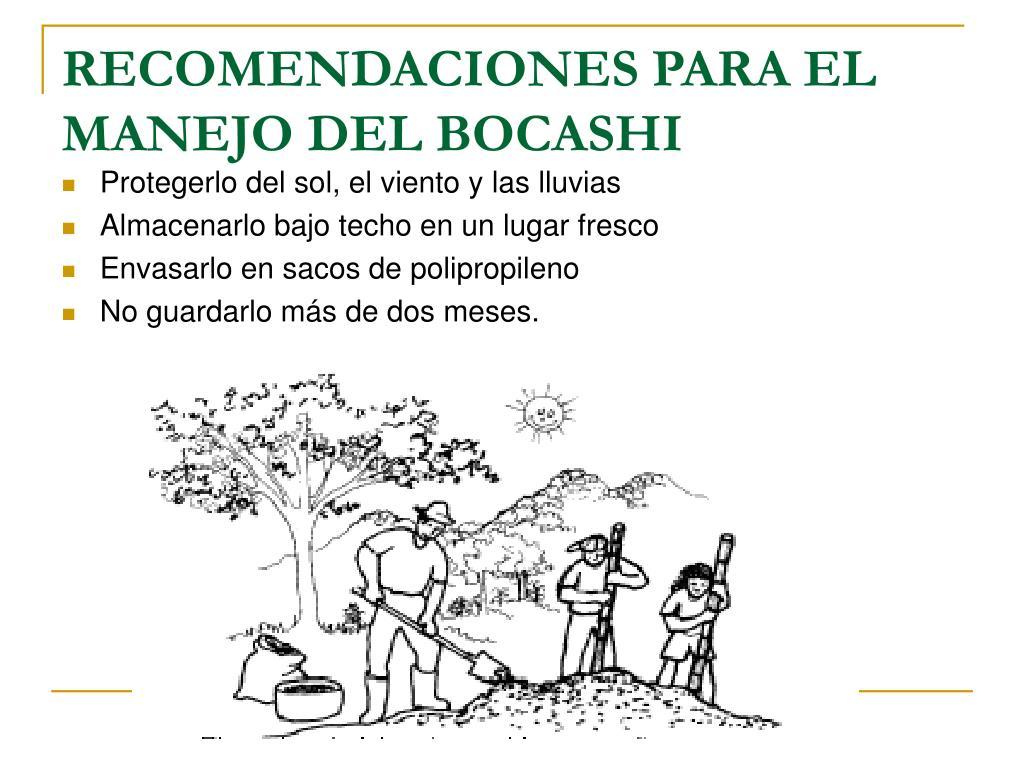 RECOMENDACIONES PARA EL MANEJO DEL BOCASHI