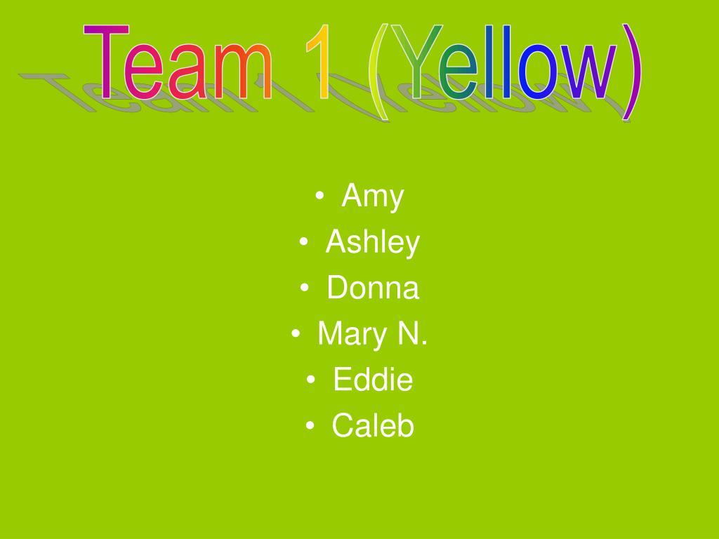 Team 1 (Yellow)