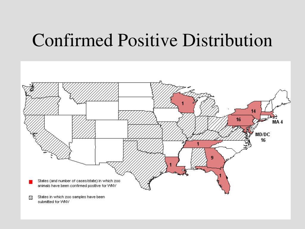 Confirmed Positive Distribution