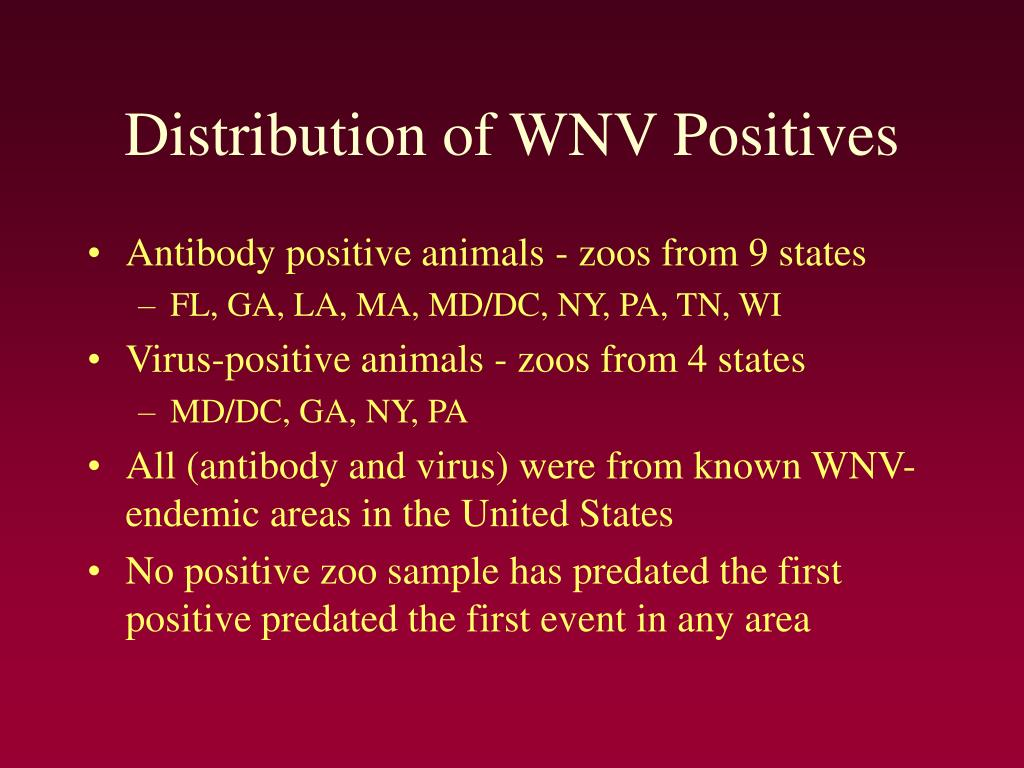 Distribution of WNV Positives