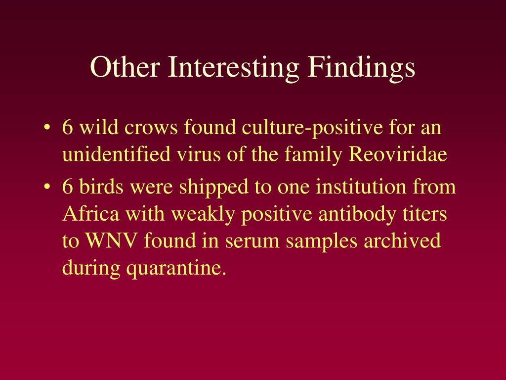 Other Interesting Findings