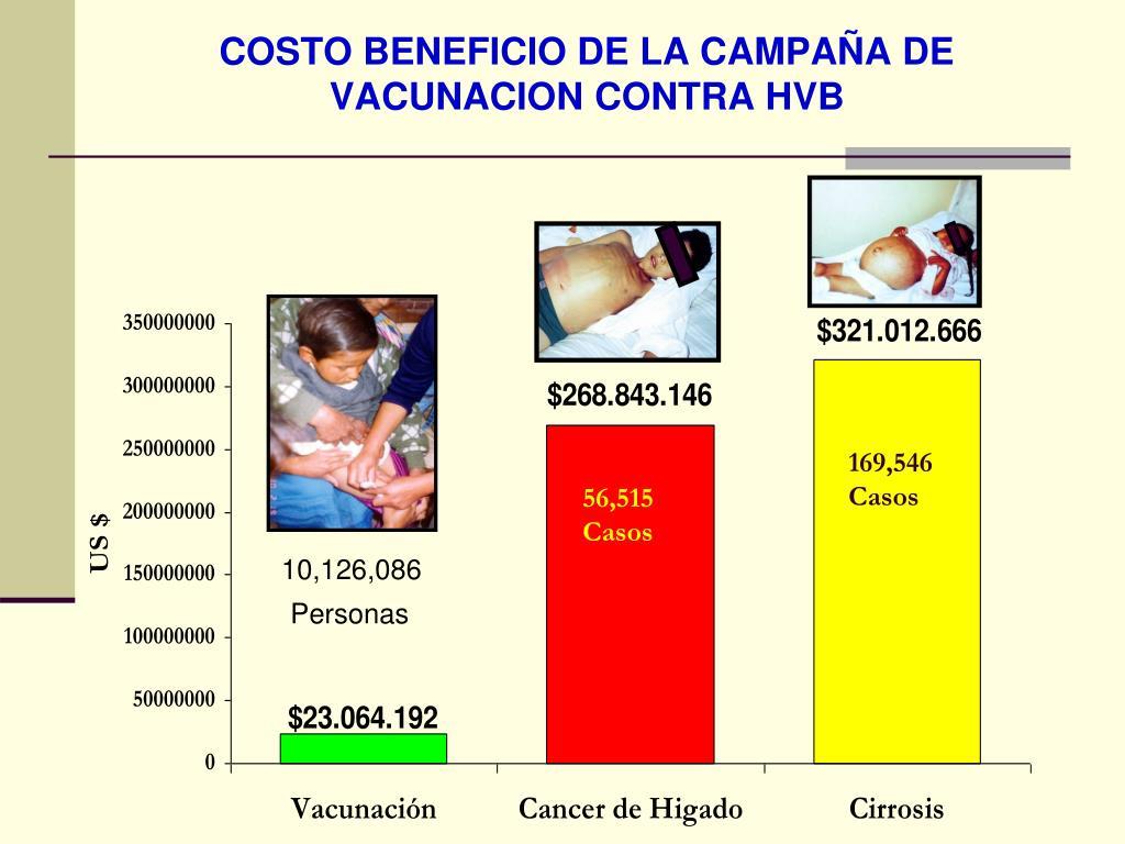 COSTO BENEFICIO DE LA CAMPAÑA DE VACUNACION CONTRA HVB