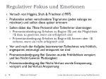 regulativer fokus und emotionen