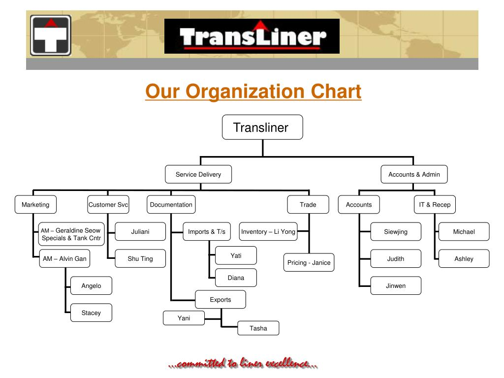 Our Organization Chart