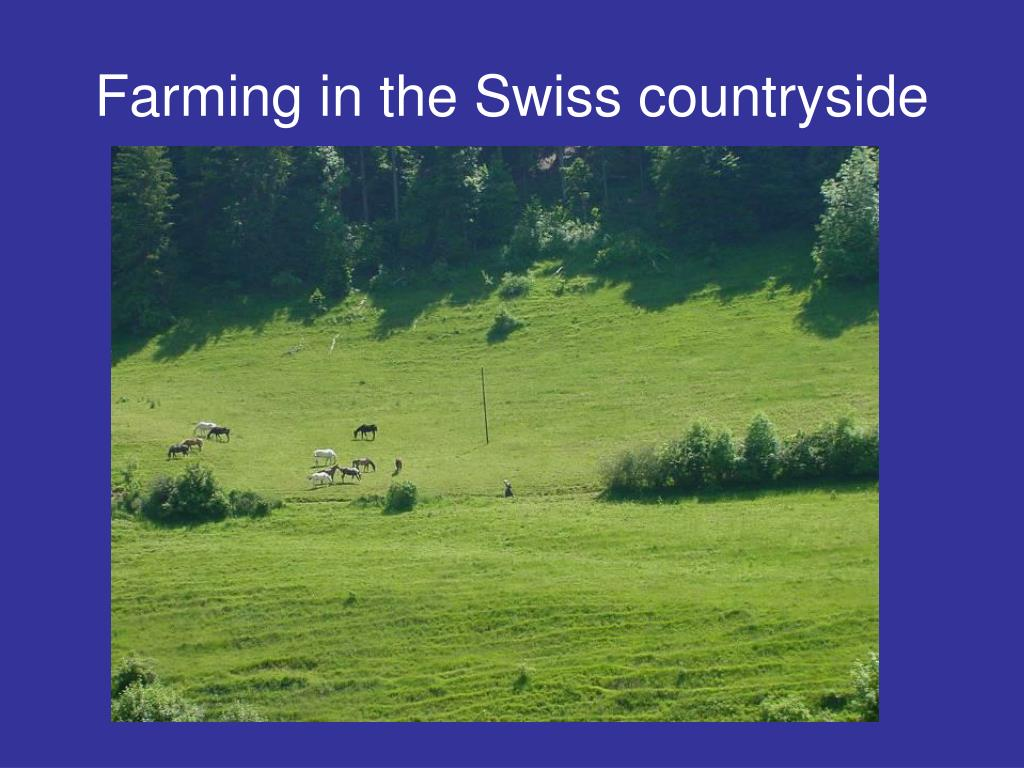Farming in the Swiss countryside