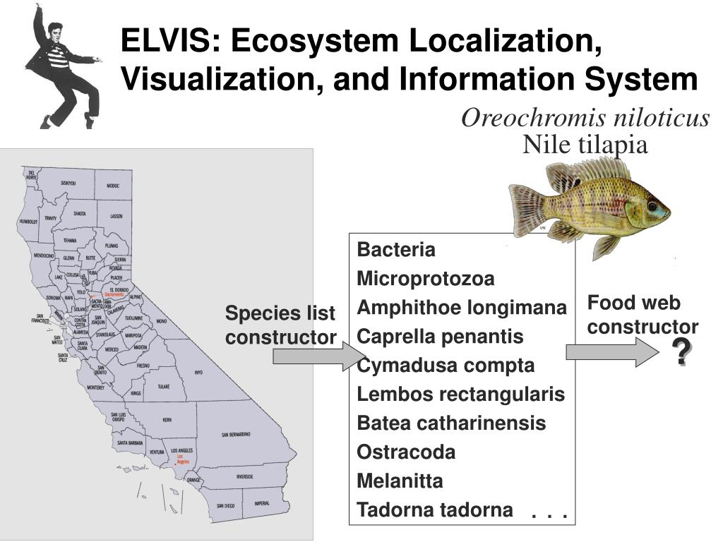 ELVIS: Ecosystem Localization, Visualization, and Information System