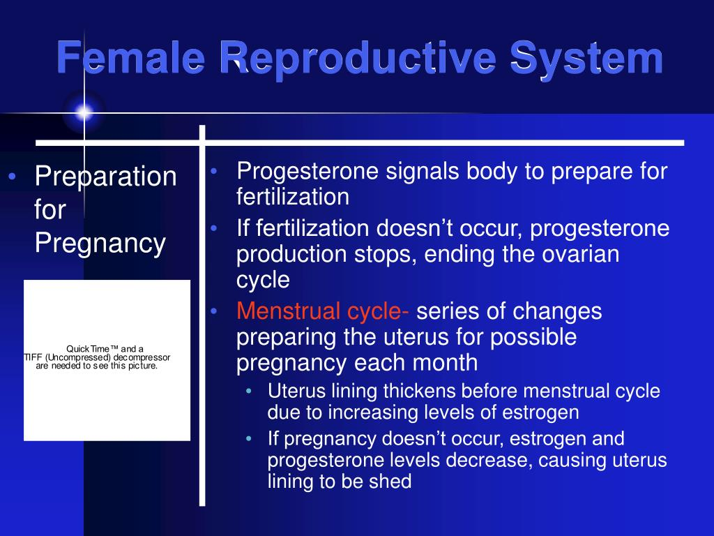 Preparation for Pregnancy