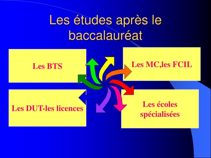 Les tudes apr s le baccalaur at