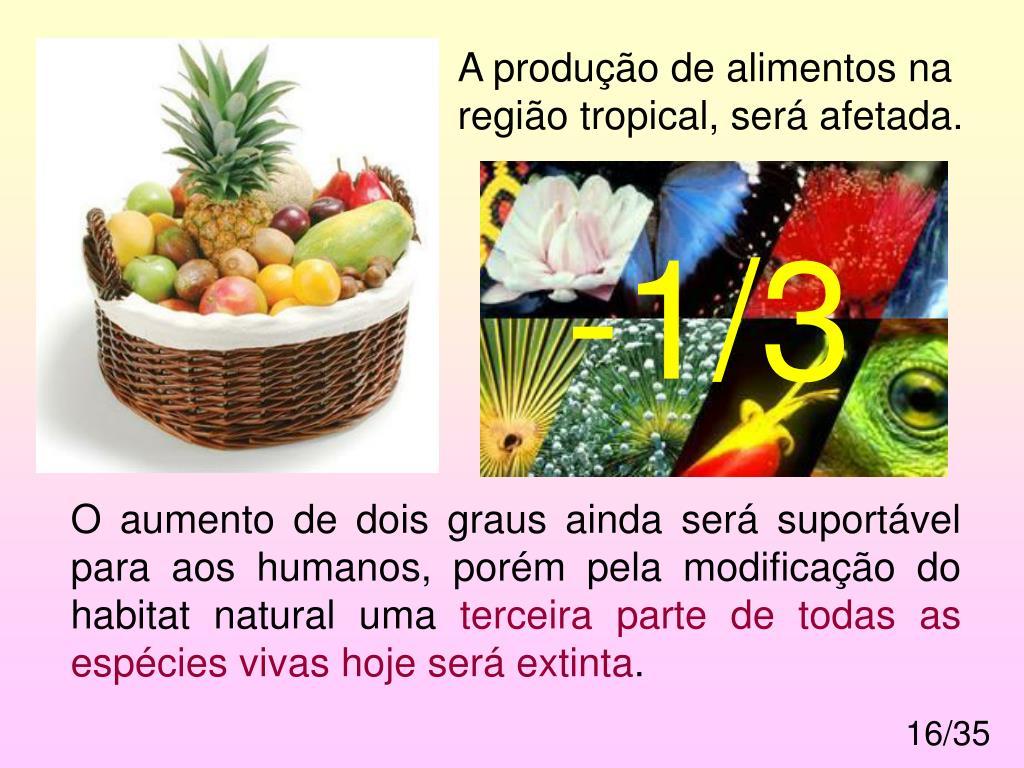 A produção de alimentos na região tropical, será afetada.