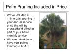 palm pruning included in price