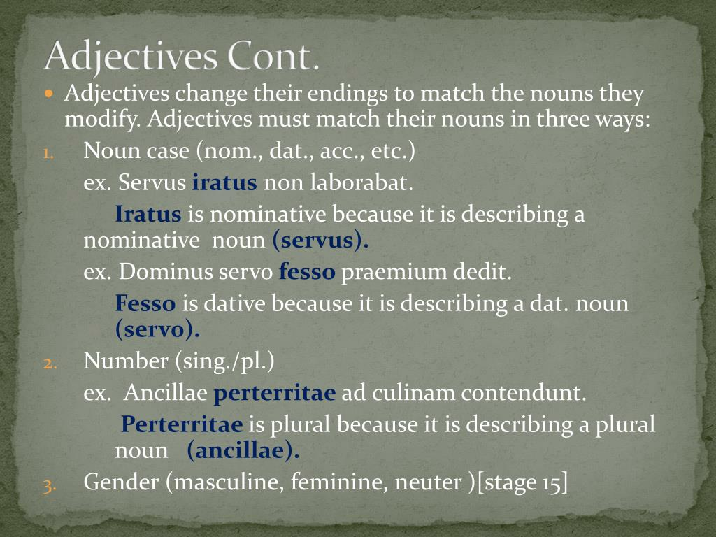 Adjectives Cont.