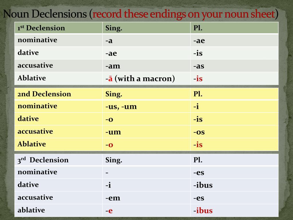 Noun Declensions (