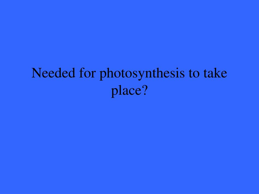 Needed for photosynthesis to take place?