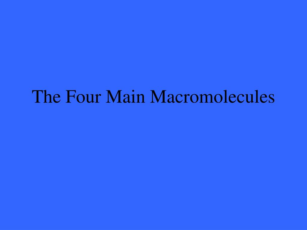 The Four Main Macromolecules