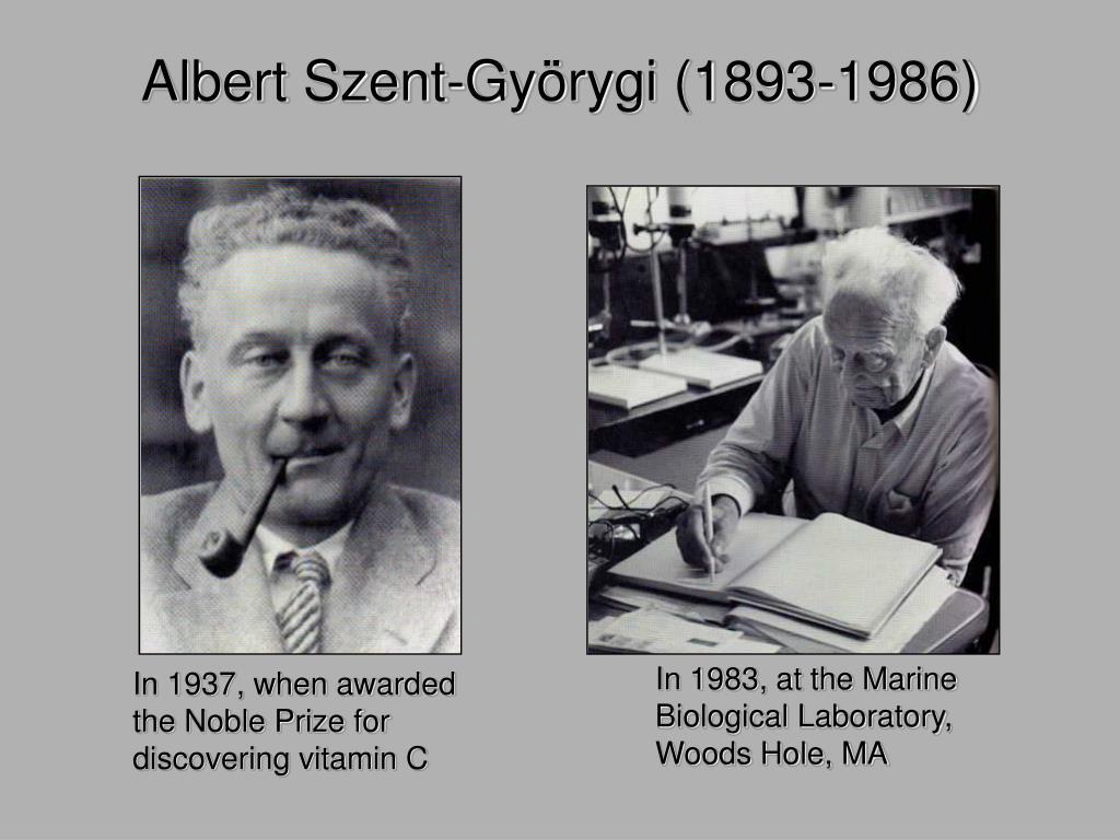 Albert Szent-Gy