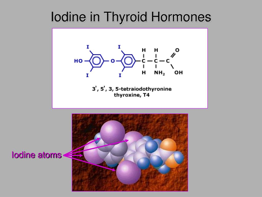 Iodine in Thyroid Hormones