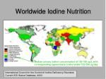 worldwide iodine nutrition