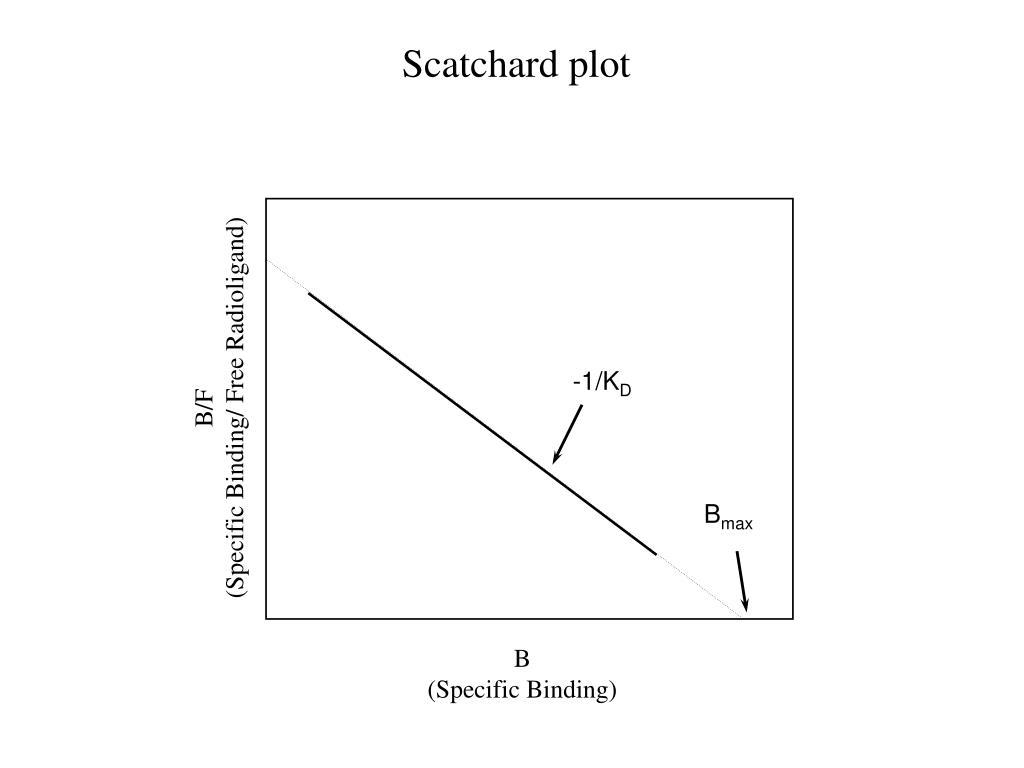 Scatchard plot