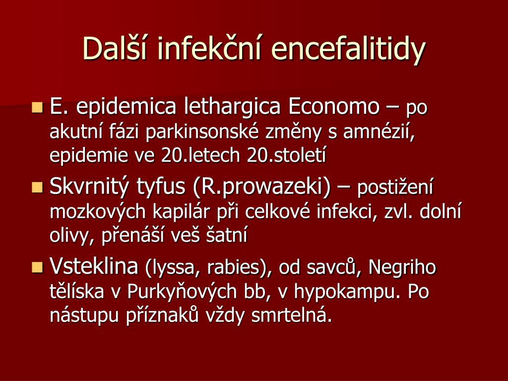 Další infekční encefalitidy