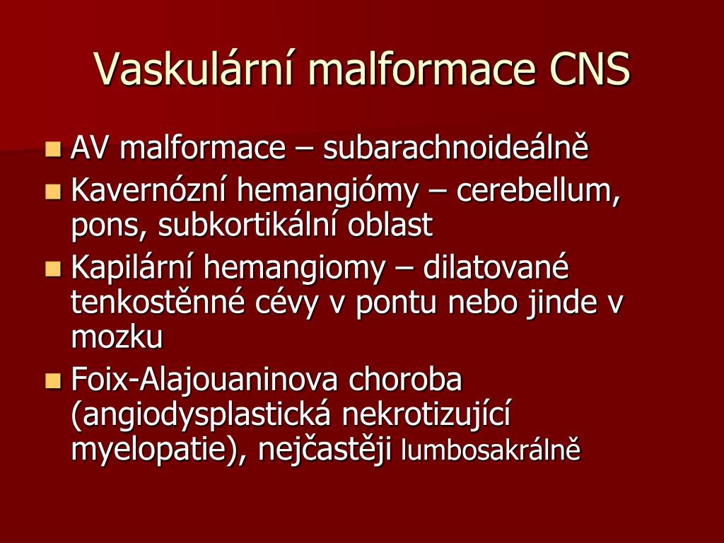 Vaskulární malformace CNS